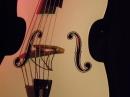 Chris-Ahron-Band-Baerengarten-Ravensburg-280510-Bodensee-Community-seechat_de-_14_.jpg