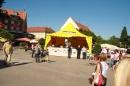 60te-RUNDUM-2010-Lindau-040610-Bodensee-Community-seechat_deIMG_1334.JPG