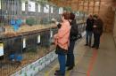 X2-Vogelschau-2010-Ailigen-Friedrichshafen-071110-Bodensee-Community-seechat_de-IMG_4638.JPG