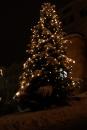 HistorischerWeihnachtsmarkt-Sigmaringen-02122010-Bodensee-Community-seechat_de-DSC05690.JPG