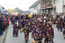 Narrentreffen-Umzug-orsingen-300111-seechat-de-DSC00742.JPG