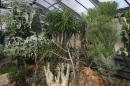 Wilhelma-Zoo-Stuttgart-050211-Bodensee-Community-seechat_de-IMG_8451.JPG