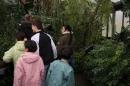 Wilhelma-Zoo-Stuttgart-050211-Bodensee-Community-seechat_de-IMG_8460.JPG