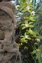 Wilhelma-Zoo-Stuttgart-050211-Bodensee-Community-seechat_de-IMG_8472.JPG