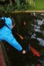 Wilhelma-Zoo-Stuttgart-050211-Bodensee-Community-seechat_de-IMG_8474.JPG