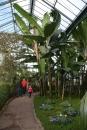 Wilhelma-Zoo-Stuttgart-050211-Bodensee-Community-seechat_de-IMG_8476.JPG