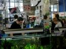 Aquafisch_Friedrichshafen_19022011-seechat_deDSCN2106.JPG