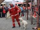 IBO-FN-110326-Bodensee-Community-seechat_de-DSCF8305.JPG
