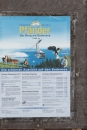 Affenberg-Salem-23042011-Bodensee-Community-SEECHAT_DE-_113.JPG