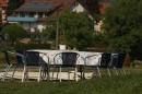 Ausflugsfahrt-Radolfzell-Reichenau-250411-Bodensee-Community_SEECHAT_DE-IMG_4840.JPG
