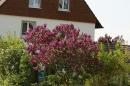 Ausflugsfahrt-Radolfzell-Reichenau-250411-Bodensee-Community_SEECHAT_DE-IMG_4844.JPG