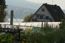 Ausflugsfahrt-Radolfzell-Reichenau-250411-Bodensee-Community_SEECHAT_DE-IMG_4870.JPG