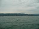RundUm-Regatta-Lindau-Bodensee-170611_Bodensee-Community-SEECHAT_DE-7424529fnq.jpg