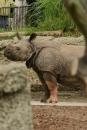 Zoo-Basel-090811-Bodensee-Community-SEECHAT_DE-DSC06081.JPG