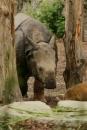 Zoo-Basel-090811-Bodensee-Community-SEECHAT_DE-DSC06088.JPG