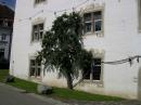 Schloss-Salem-12082011-Bodensee-Community-seechat_de-_20.JPG