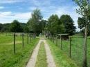 Haustierhof-Reutemuehle-13082011-Bodensee-Community-seechat_de-_112.JPG