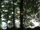 Marienschlucht-Bodman-14082011-Konstanz-Bodensee-Community-seechat-de-IMG_8749.JPG