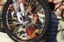 EUROBIKE-Fahrradmesse-Friedrichshafen-310811-Bodensee-Community-SEECHAT_DE-IMG_4311.JPG