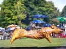 Baehnlesfest-2011-Tettnang-110911-Bodensee-Community-SEECHAT_DE-101_3466.JPG