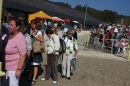 Hengstparade-Marbach-2011-011011-Bodensee-Community-SEECHAT_DE-IMG_0159.JPG