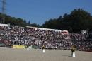 Hengstparade-Marbach-2011-011011-Bodensee-Community-SEECHAT_DE-IMG_0172.JPG