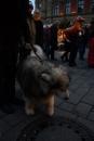 seechat-Bodensee-Community-Treffen-Weihnachtsmarkt-Konstanz-111211-SEECHAT_DE-_74.JPG
