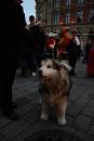 seechat-Bodensee-Community-Treffen-Weihnachtsmarkt-Konstanz-111211-SEECHAT_DE-_76.JPG