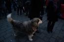 seechat-Bodensee-Community-Treffen-Weihnachtsmarkt-Konstanz-111211-SEECHAT_DE-_78.JPG
