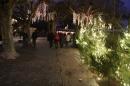 seechat-de-Bodensee-Community-Treffen-Weihnachtsmarkt-Konstanz-111211-SEECHAT-IMG_7505.JPG