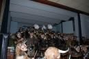 Guggenmusiktreffen-2012-Engen-140112-Bodensee-Community-seechat_deDSC_5644.JPG