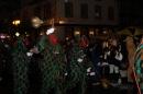Nachtumzug-Rielasingen-27012012-Bodensee-Community-Seechat_de5108.jpg