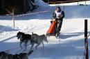 Schlittenhunderennen-Bernau-04022012-Bodensee-Community-Seechat_de_1210.jpg
