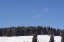 Schlittenhunderennen-Bernau-04022012-Bodensee-Community-seechat_de_07.jpg