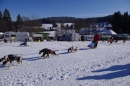 Schlittenhunderennen-Bernau-04022012-Bodensee-Community-seechat_de_129.jpg