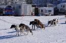 Schlittenhunderennen-Bernau-04022012-Bodensee-Community-seechat_de_130.jpg