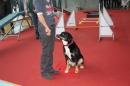 Hundemesse-2012-Ravensburg-250212-Bodensee-Community-seechat_de-IMG_0670.JPG