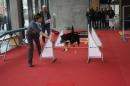 X3-Hundemesse-2012-Ravensburg-250212-Bodensee-Community-seechat_de-IMG_0669.JPG