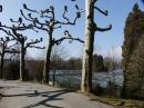 Insel-Mainau-23-03-2012-Bodensee-Community-SEECHAT_DE-_07.JPG