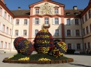 Insel-Mainau-23-03-2012-Bodensee-Community-SEECHAT_DE-_111.JPG