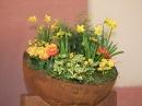 Insel-Mainau-23-03-2012-Bodensee-Community-SEECHAT_DE-_114.JPG