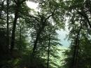 Marienschlucht-Wanderung-27042012-Bodensee-Community_SEECHAT_DE-IMG_8662.JPG
