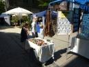 Stadtfest-Singen-170612-Bodensee-Community-SEECHAT_DE-P1000538.JPG