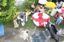 seechat_de-Ente-gut-Seehafenfliegen-Lindau-30062012-Bodensee-Community-SEECHAT_DE-IMG_9197.JPG