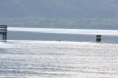ORCA-Bodenseequerung-Bodman-100712-Bodensee-Community-SEECHAT_DE-IMG_0638.JPG