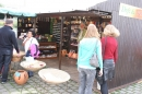 Donaufest-2012-Ulm-150712-Bodensee-Community-SEECHAT_DE-IMG_1538.JPG