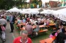 Donaufest-2012-Ulm-150712-Bodensee-Community-SEECHAT_DE-IMG_1587.JPG