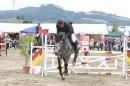 Reitturnier-Reitclub-Wahlwies-29072012-Bodensee-Community_SEECHAT_DE-IMG_3734.JPG