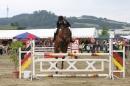 Reitturnier-Reitclub-Wahlwies-29072012-Bodensee-Community_SEECHAT_DE-IMG_3829.JPG