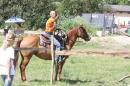 Criollos-Equitation-Hoffest-Gailingen-040812-Bodensee-Community-SEECHAT_DE-_527.JPG